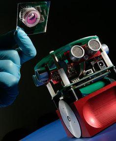 10 of the Most Innovative Modern Robot Designs   WebUrbanist