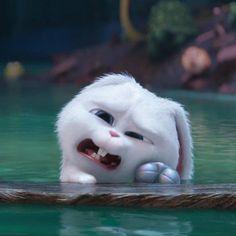 Cute Bunny Cartoon, Cute Cartoon Pictures, Girl Cartoon, Funny Phone Wallpaper, Cute Disney Wallpaper, Cute Cartoon Wallpapers, Snowball Rabbit, Rabbit Wallpaper, Arte Do Kawaii