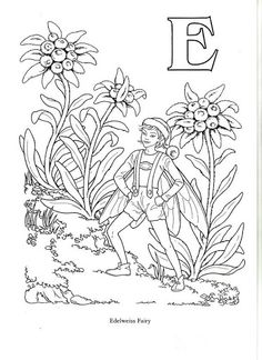 Flower and Fairy Alphabert by Darcy May - Oksana Volkova - Álbuns da web do Picasa