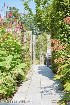 plant choice for garden design Simple lines and natural materials for a garden makeover: hydrangea, Garden Makeover, Backyard Makeover, Free Plants, Cool Plants, Urban Landscape, Landscape Design, Small Gardens, Outdoor Gardens, Hillside Landscaping