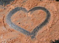 I love cocoa Superfoods, Cocoa, Powder, Face Powder, Super Foods, Theobroma Cacao, Hot Chocolate
