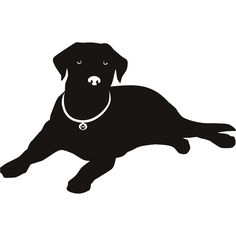 Labrador Nose Silhouette Dogs Wall Art Stickers Wall Decal Transfers | eBay
