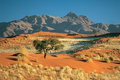 Top 15 Most Beautiful Deserts In The World