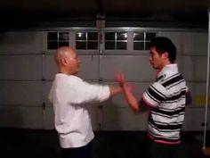 詠春過手 少川靖男 Wing Chun Kung Fu, Sticky Hand - YouTube Bruce Lee, Kung Fu, Wing Chun, Wings, Youtube, Feathers, Feather, Youtubers, Ali