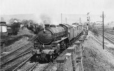 GCR annesley Diesel Locomotive, Steam Locomotive, Steam Trains Uk, Young Lad, Steam Railway, British Rail, Steamers, Steam Engine, Sheffield
