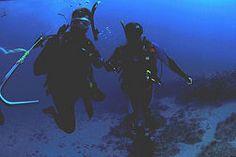 8 Tips to Maximize Your Scuba Dive