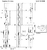 An excerpt from George Balanchine's Symphonie Concertante (1947; originally performed in 1945 by students of School of American Ballet). Notation by Ann Hutchinson Guest assisted by Els Grelinger (1948). (Notation courtesy of the Dance Notation Bureau, Inc. Choreography by George Balanchine © The George Balanchine Trust.)