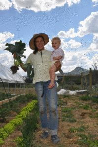 """A Response to The Wall Street Journal article: """"Organic Farming Is Not Sustainable"""" - Cornucopia Institute"""