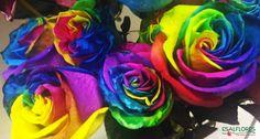 Sim, as rosas arco-íris existem mesmo! Chamadas de Rainbow Roses ou Happy Roses, foram criadas pelo holandês Peter van de Werken. Lindas!