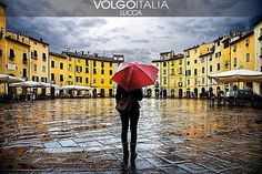Lucca (LU) Foto di  @carlocafferini  #lucca #toscana #italia #italy #volgolucca #volgotoscana #volgoitalia #turism #holiday #travel #instatravel #travelgram #turismo #italyturism #italytravel #travelingram #madeinitaly #volgosocial #cittadellecentochiese #piazza #anfiteatro #architettura #pioggia #riflesso #artcity #cittadarte #Square #amphitheater #architecture #rain by volgolucca