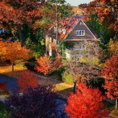 rie-k-photo:  Autumn View From Our Roof by Joe Shlabotnik http://flic.kr/p/qwTK9Z