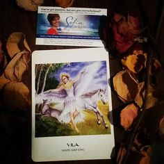 Today's bonus #Intuitive #Oracle card reading is Shapeshifter  The Vila is a beautiful woman who can change her form as you are in the midst of doing.