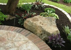 Perfect for under our tree! We have no grass anyway due to drought and dog, I w… - All For Garden Texas Landscaping, Landscaping Around Trees, Landscaping With Rocks, Outdoor Landscaping, Outdoor Gardens, Landscaping Ideas, Landscape Design, Garden Design, Garden Pictures