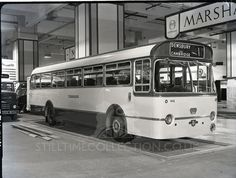 tpt-transport-bus-minibus-double-decker-coach-motor-engine-earls-court-show-presentation-demonstration-seminar-leyland-tiger-cub-yorkshire-m...