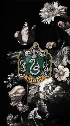 -Pin by hicrete dilmen Slytherin Harry Potter, Slytherin Pride, Harry Potter Houses, Slytherin Aesthetic, Harry Potter Aesthetic, Harry Potter Universal, Harry Potter World, Harry Potter Background, Harry Potter Pictures