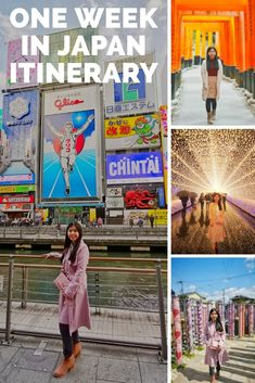Spending one week in Japan? Check out what we did during our one week in Japan Japan Travel Guide, Tokyo Travel, Asia Travel, Vietnam Travel, Thailand Travel, Japanese Travel, Japanese Food, Backpacking Asia, Countries To Visit