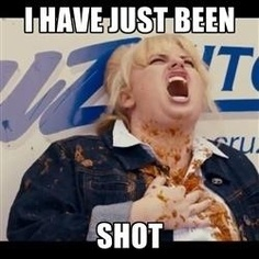 Fat Amy is my animal spirit