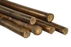 zwarte bamboe