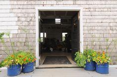 Broadturn farm's flora-bliss