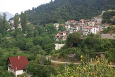 Stromi is the village of Gkiona, where is situated the Cave of the Resistance and the Waterfall of Kremasis. Plane Tree, Firs, Stone Houses, Greece Travel, Banks, Photo S, Travelling, Dolores Park, Waterfall