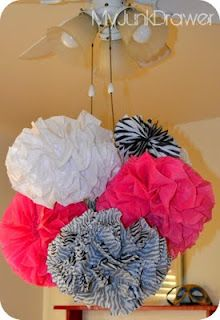 for the hot pink & zebra them oh yes ill be making these Pom poms