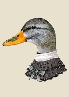 Female Duck print 5x7 por berkleyillustration en Etsy, $10.00: