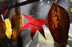 a few fun and creative ways to practice gratitude this season and always: http://www.jenberlingo.com/the-practice-of-gratitude/