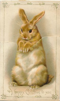 Victorian Christmas card rabbit, but good for Easter if you cut the bunny out. Victorian Christmas, Vintage Christmas Cards, Christmas Images, Vintage Holiday, Vintage Cards, Vintage Postcards, Vintage Images, Christmas Bunny, Christmas Art
