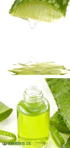 ALOE VERA...Remarkable 2,000 year-old remedy is traditionally soothes cuts, wounds, sunburns, and scars. Aloe Vera Gel also moisturizes the skin.