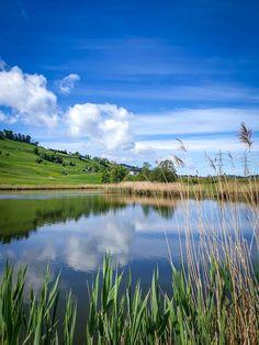 Rund um Samstagern kannst du bei einem gemütlichen Spaziergang gleich drei kleine Seen umrunden: Den Hüttnersee, den Itlimoosweiher und den Sternenweiher. #Ausflugstipp #Schweiz Seen, Switzerland, Golf Courses, Mountains, Nature, Travel, Boathouse, Nature Reserve, Round Round