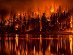 Judgment On America? We Are On Pace For The Worst Year For Wildfires In All Of U.S. History!