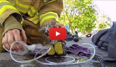 Resgate de um gato asfixiado pela fumaça de um incêndio, vistos pelos olhos do bombeiro