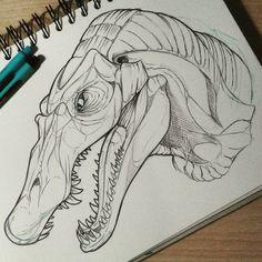 Spinosaurus - Fanart (Jurassic Park) Material: Black Ballpen and Sketchbook.  Artist: Fabian Marscholik