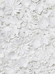 white flowers, craft, flower art, texture, paper flowers