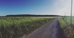 """ When the west wind moves upon the fields of barley..."" #street #roadtrip #road #field #fieldtrip #green #spring #springtime #light #nature #tuscany #igerstoscana #igerspisa #tuscanygram #tuscanybuzz #tuscanypeople #walk #sunny #skyporn #sky #instagood #instalike #instamood #communityfirst #tagsforlikes #iphonesia #liveauthentic #livefolk by giuliapratelli"
