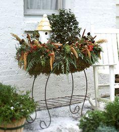 Beautiful Birdhouse Display