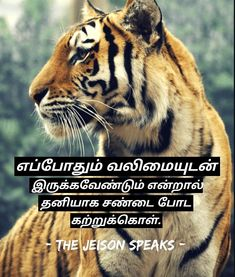 Practical philosophy is a Tamil podcast Talk in all podcast platforms. Find More Amazing Tamil Motivation podcast and Tamil personal development podcast in the link below👇 Learn To Fight Alone, Personal Development, Platforms, Philosophy, Real Life, Motivation, Learning, Link, Amazing