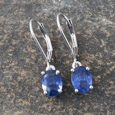 Himalayan Kyanite Lever Back Earrings in Platinum Overlay Sterling Silver (Nickel Free)