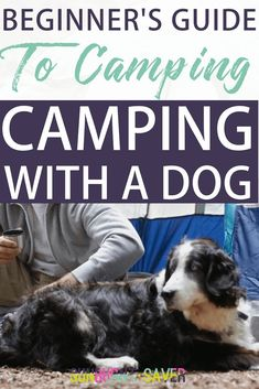 A Bit Nervous About Camping? These Tips Will Set You At Ease! - Helpful Camping Tips Camping Store, Van Camping, Camping Games, Family Camping, Camping Gear, Outdoor Camping, Camping With A Dog, Camping Packing, Backpacking