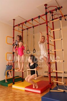 Indoor jungle gym - how cool would this be? My kids are little monkeys and climb on everything... this would be perfect!