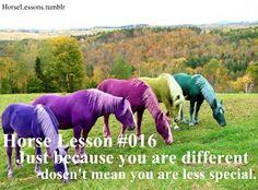 horse lesson nr. 16