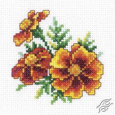 Marigold - Cross Stitch Kits by RTO - H243                                                                                                                                                                                 More