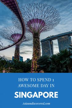 How To Spend 1 Awesome Day In Singapore Singapore Travel Tips, Singapore Itinerary, Singapore Trip, Culture Of Singapore, Gardens By The Bay, Bhutan, Beautiful Buildings, India Travel, Mongolia