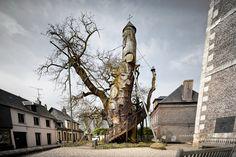 Velho carvalho que abriga duas capelas no interior, França