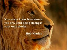 You never know how strong you are, until being strong is your only choice...~Bob Marley