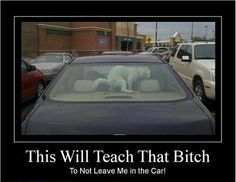 Funny Pictures of the week, 71 images. This Will Teach That B*Tch To Not Leave Me In The Car Funny Car Memes, Car Humor, Funny Dogs, Funny Animals, Animal Funnies, Funny Humor, Funny Cartoons, Funny Images, Funny Pictures