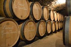 D'Aloxe Corton au nord, jusqu'à Santenay au sud, en passant par Beaune, Auxey-Duresses, Meursault et Chassagne-Montrachet, une multitude de petites parcelles constitue la mosaïque de nos vins.
