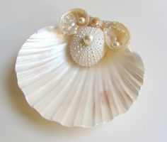 Beach Wedding Seashell Ring Pillow Shell Ring Bearer Bridal Accessory with Sea Urchin and Abalone Shell Accents by CereusArt on Etsy https://www.etsy.com/listing/158145287/beach-wedding-seashell-ring-pillow-shell