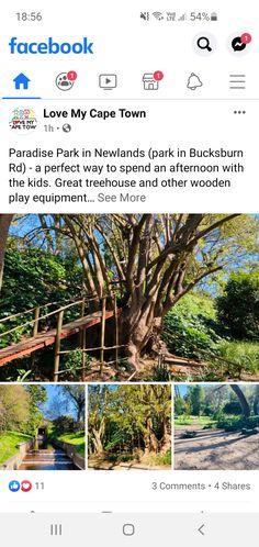 Play Equipment, Cape Town, Paradise, Park, City, Plants, Parks, Cities, Plant