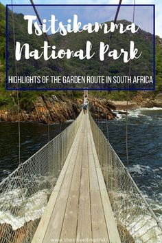Top 10 Highlights of the Garden Route in South Africa - The Travelling Chilli Africa Destinations, Travel Destinations, Holiday Destinations, Travel Couple, Family Travel, Travel Guides, Travel Tips, Travel Advice, Tsitsikamma National Park
